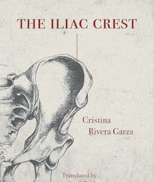 About search results three percent the iliac crest by cristina rivera garza why this book should win fandeluxe Images