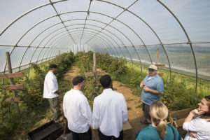 Representatives from Dining Services and Aramark take a tour of Headwater Food Hub and partner farm Lagoner Farms in Ontario, New York, last summer.
