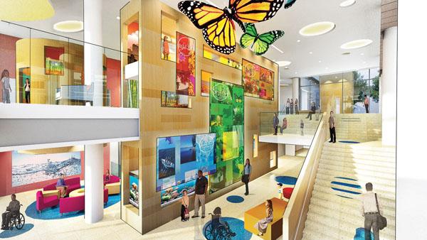 Amazing child friendly interior surfaces