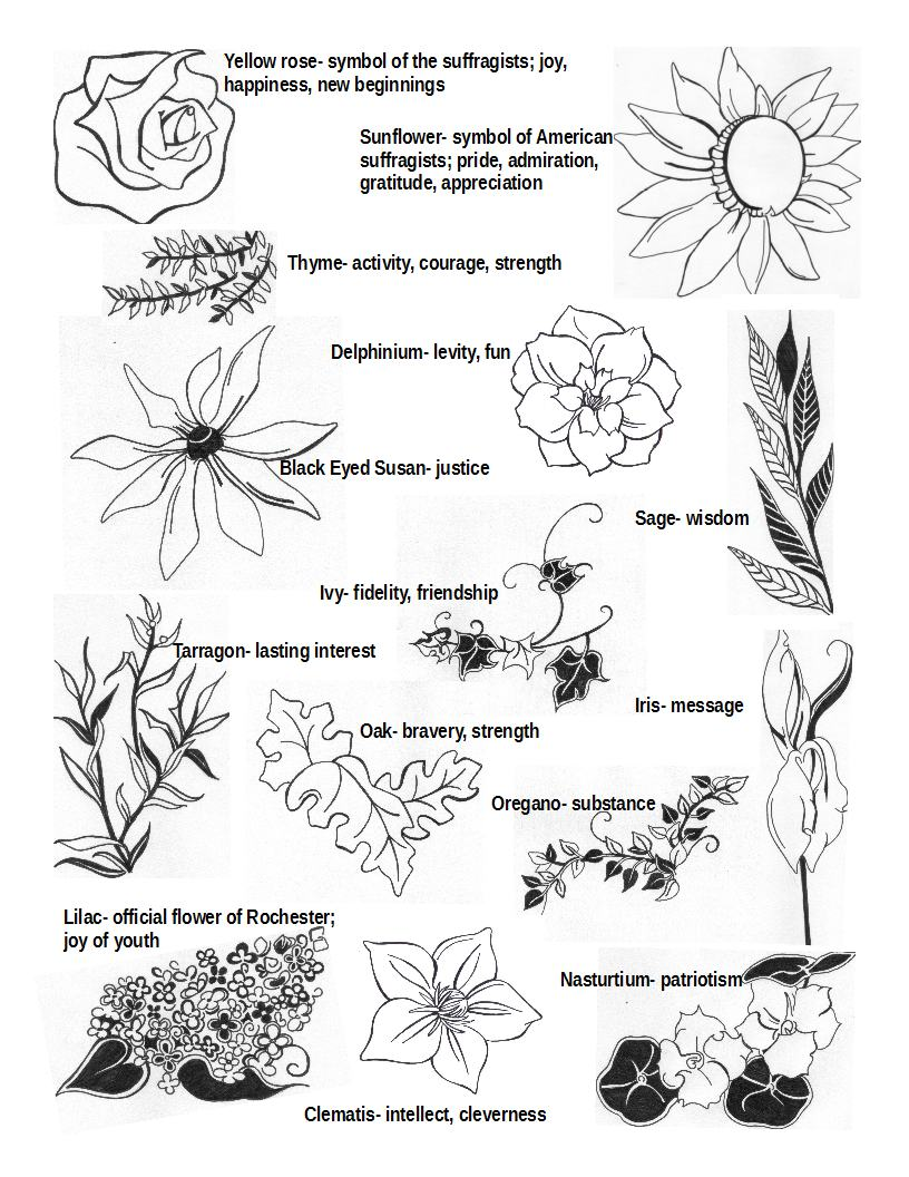 2017 centennial celebration flower key the susan b anthony center 2017 centennial celebration flower key izmirmasajfo
