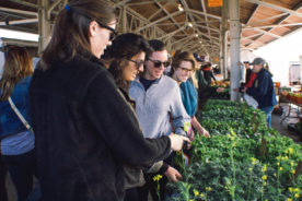 A visit to the Rochester Public Market is a popular Saturday tradition for students and the community alike.