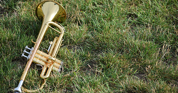 Trumpet on a lawn