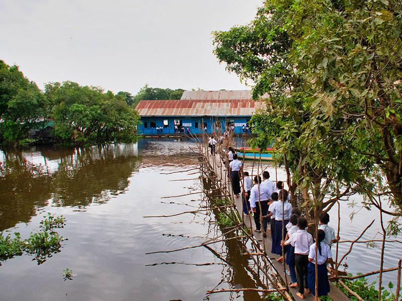 The bridge between schools