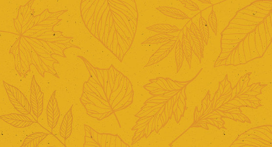 Thanksgiving patterned background