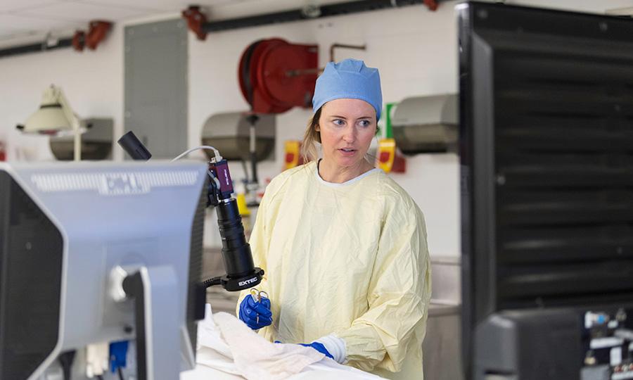 Paula Doyle in hospital scrubs doing obstetrics exam at University of Rochester Medical Center