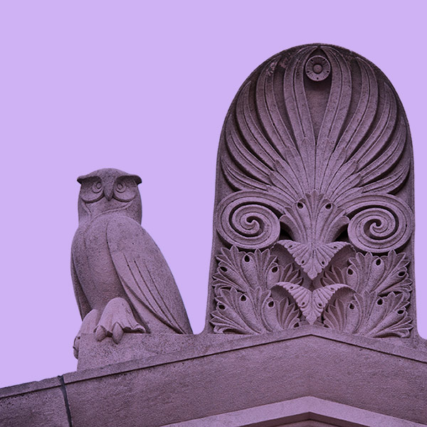owls status on the library