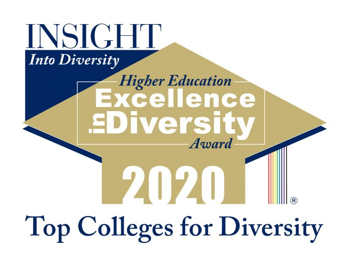 The HEED Insight into Diversity 2020 Award logo