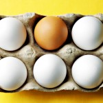 Nutrient in Eggs and Meat May Influence Gene Expression from Infancy to Adulthood
