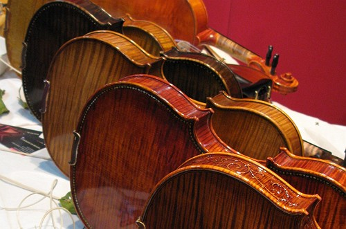 backs of violins