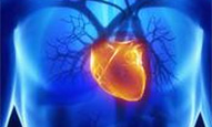Cardiac Therapy to be Tested in Asia
