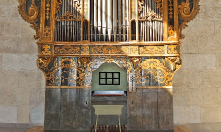 organ at MAG