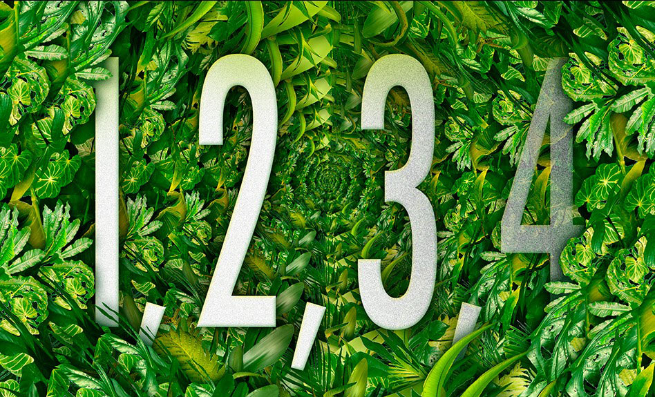 numbers on leaves