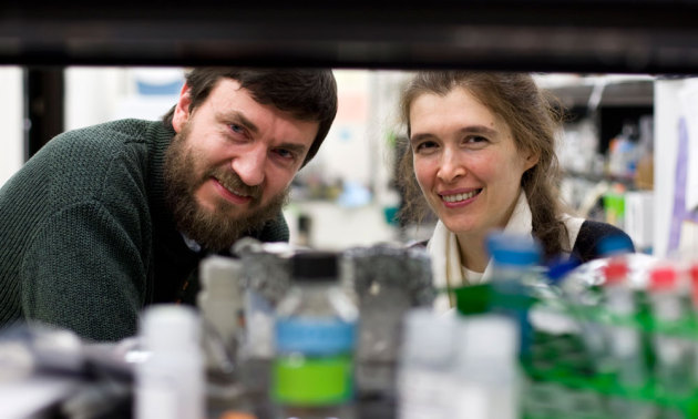 Vera Gorbunova and Andrei Seluanov in their lab