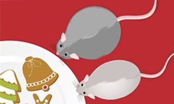 illustration of mice eating cookies