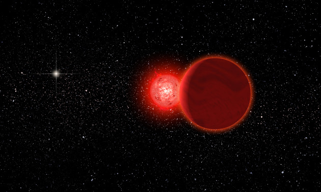 Artist's conception of Scholz's star