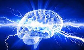 stock art illustration of a brain