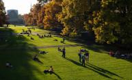 An autumnal reprieve