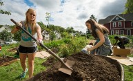 students with shovels doing work in a community garden