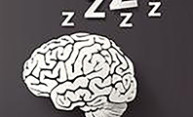 illustration of a brain with zzzzzz's to indicate sleep