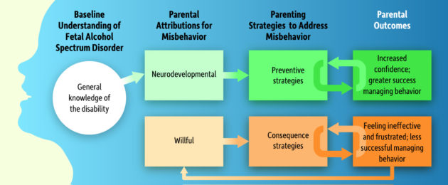 FASD behavior flow chart