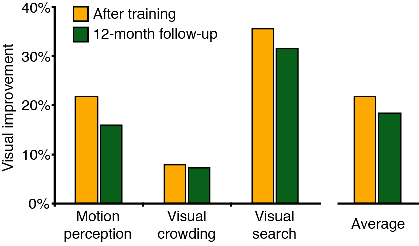 Graph showing range of visual improvement