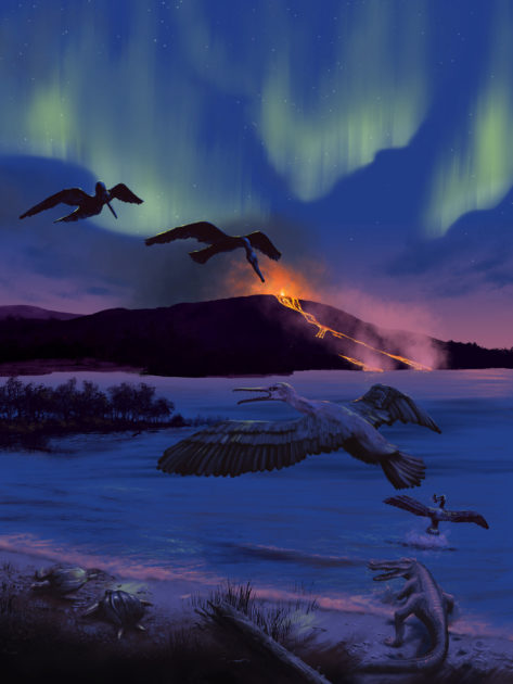 An artist's rendering of the bird's possible environment 90 million years ago, characterized by volcanic activity, a freshwater bay, turtles, fish, and champsosaurs