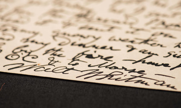 close-up of Walt Whitman signature