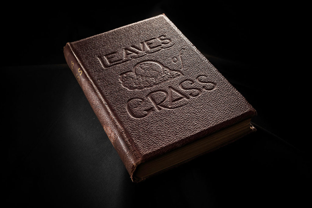 Cover of LEAVES OF GRASS by Walt Whitman
