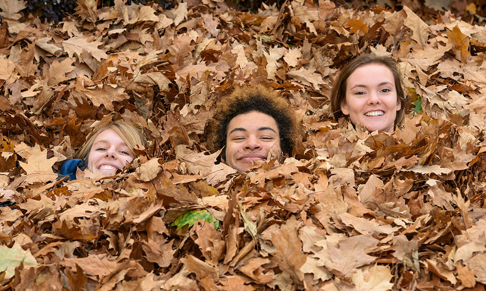 three students in pile of leaves