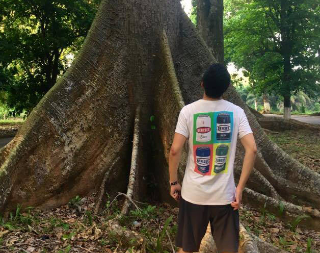 Young man looking up trunk of old tree