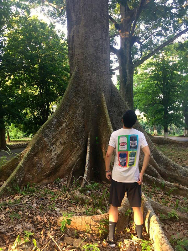 view of young man looking up trunk of a tree with massive roots