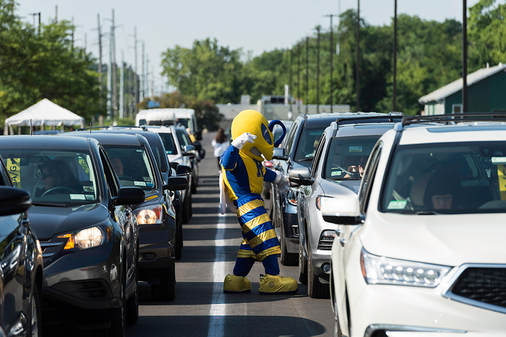 Rocky yellowjacket mascot with cars