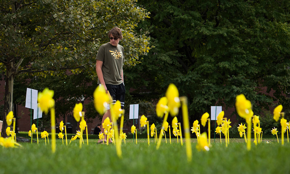 young man walking by yellow pinwheels