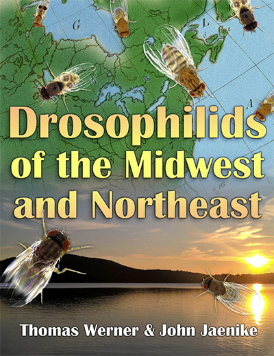 book cover with text that reads DROSOPHILIDS OF THE MIDWEST AND NORTHEAST