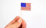 hand holding a small flag