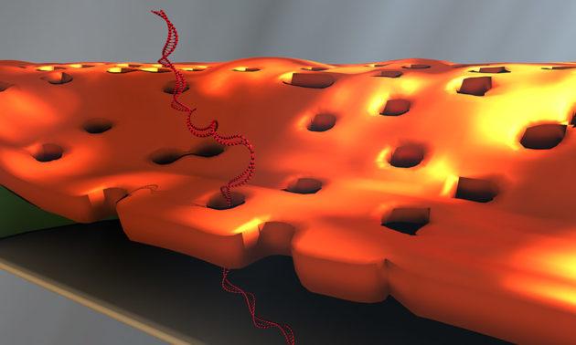 artist's illustration of nanofilter