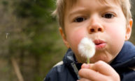 child blowwing the seeds off a dandelion
