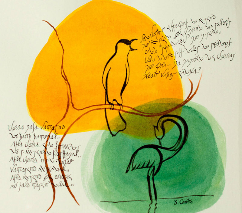 illustration of two birds with writing from a constructed language