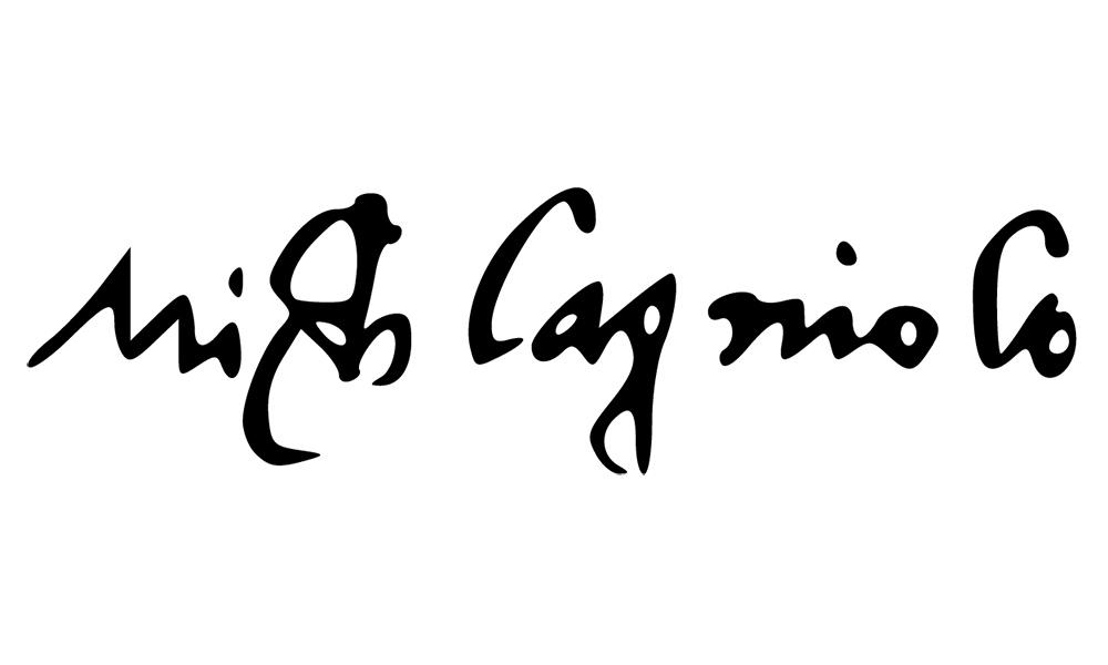 Michelangelo signature