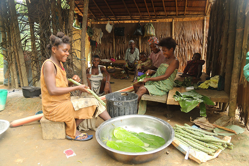 women preparing a meal with large leafy vegetables