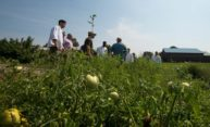 Dining Services staff tour local farm