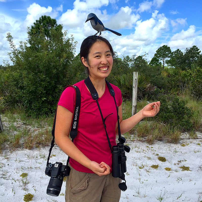 Nancy Chen, cameras slung around her shoulders, poses as a scrub jay bird lands on her head.