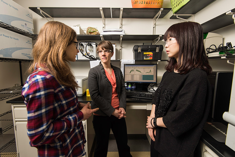 Danielle Benoit in the lab speaking with two of her students.