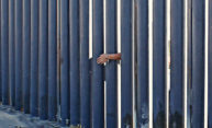 Crisis at the border? Anthropologist looks at Central American migration