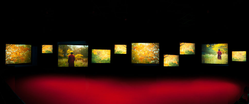 art installation Lessons of the Hour features a row of ten video screens of different sizes containing images of Frederick Douglass walking through autumn trees