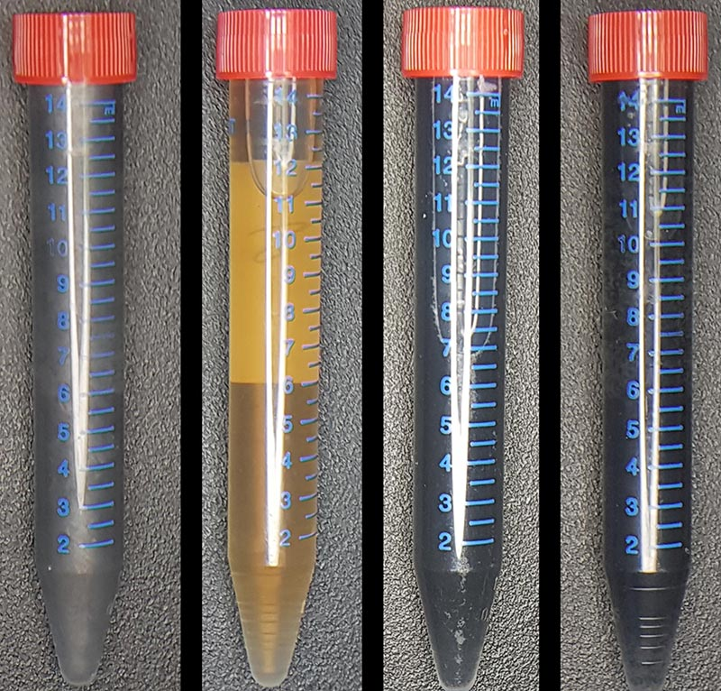 four test tubes side by side, each containing a graphene substance of a different color