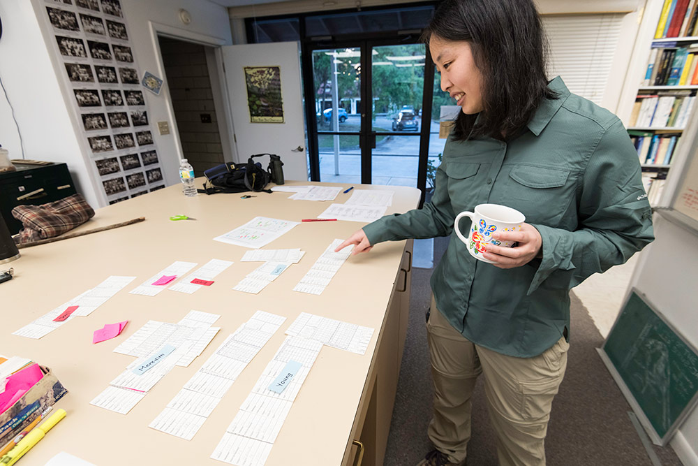 researchers lays out many slips of paper on a large table