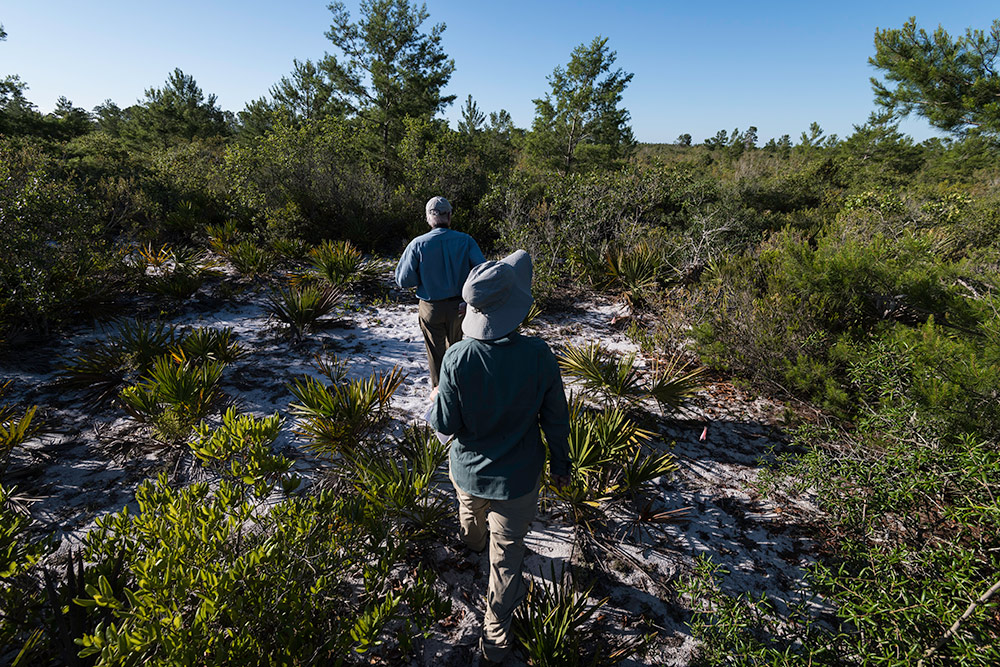 two workers walking through the scrub brush.