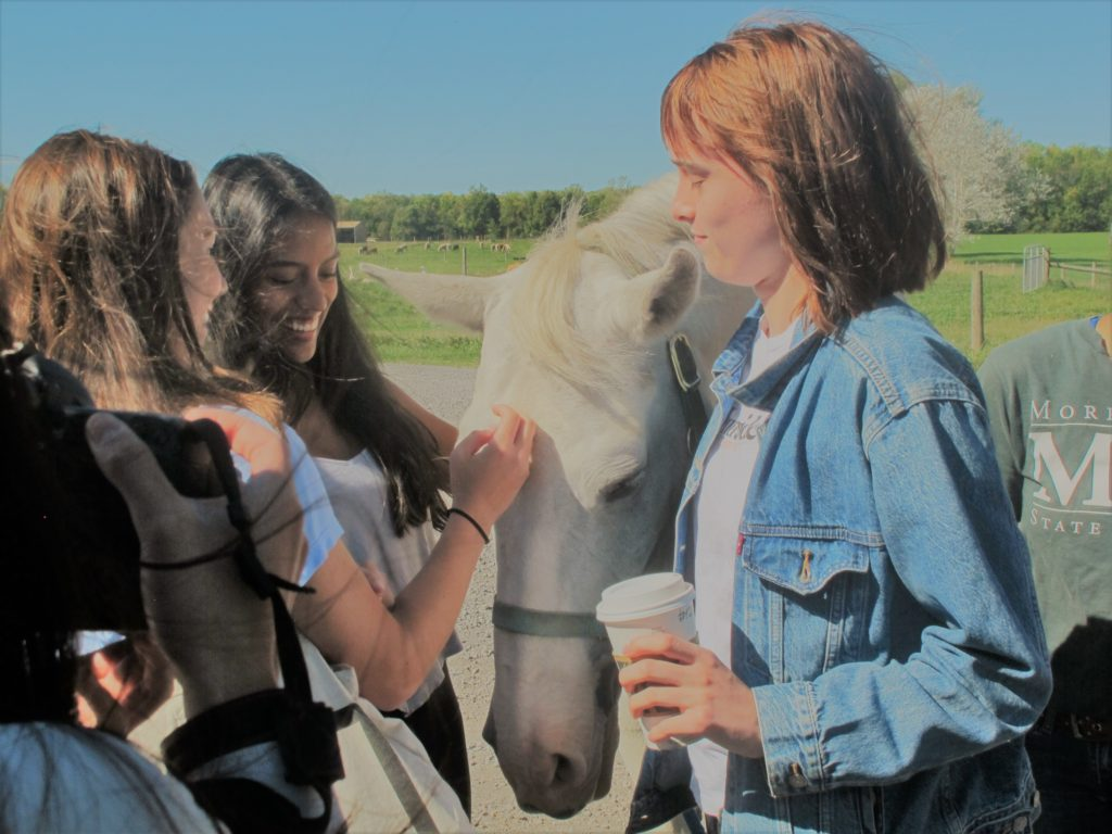 group of students petting a horse.