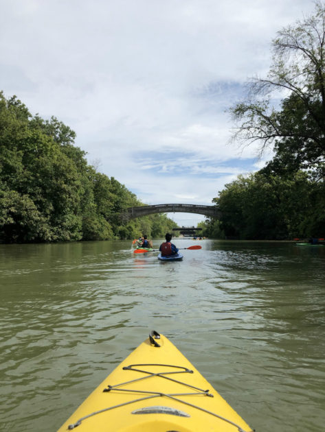 kayakers on the Genesee River